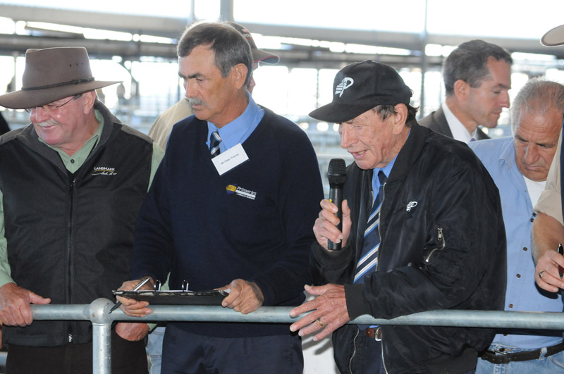 Western Australian Meat Industry - Muchea Livestock - WAMIA